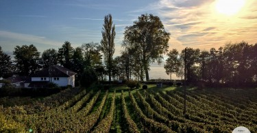 Bodensee im Herbst 2014 | Eine spontane Woche Auszeit | Lest die Reisegeschichte auf www.jollyandluke.de