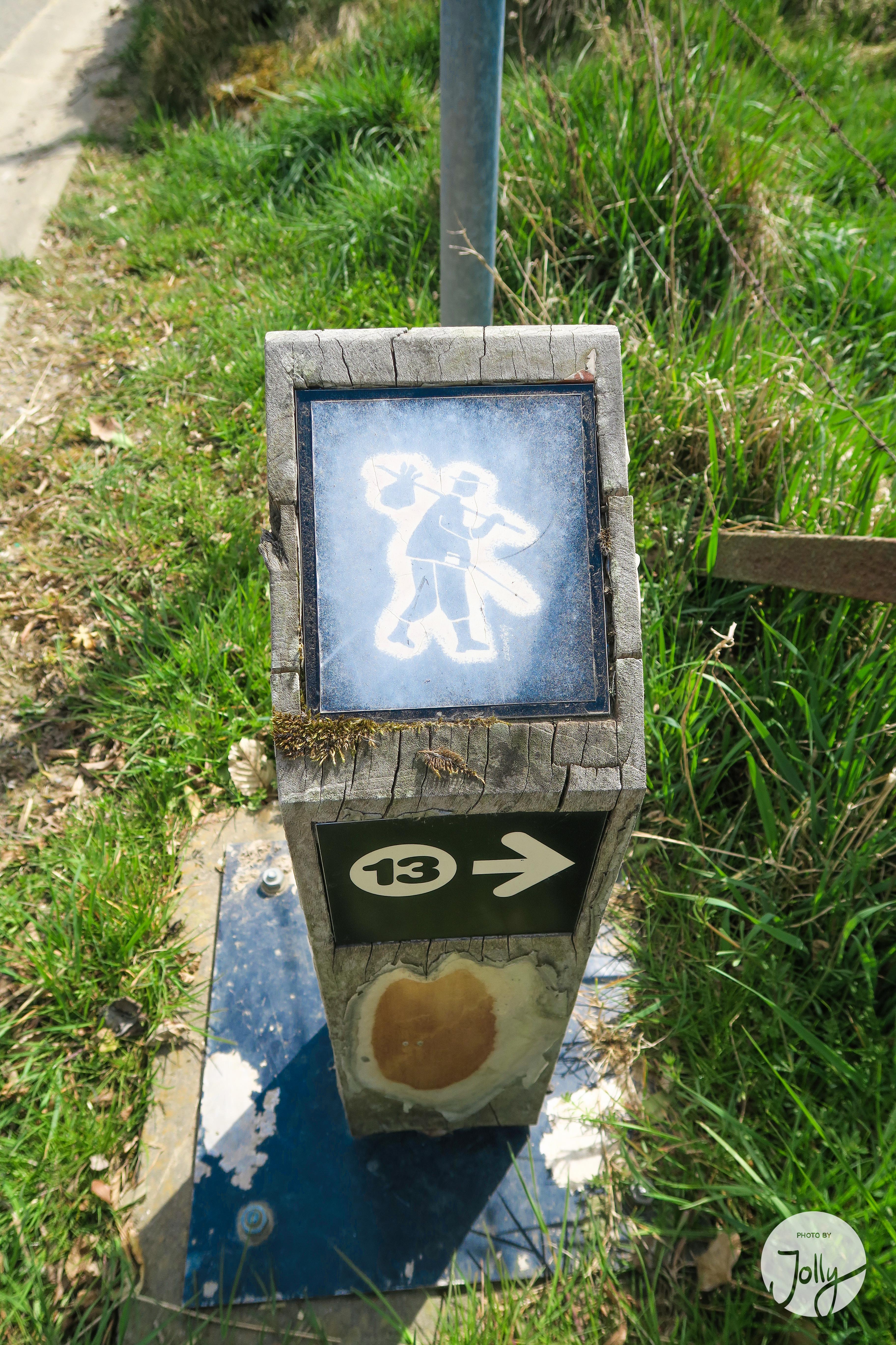 Wandern in den Ardennen - Belgien für Anfänger | Reisegeschichte auf jollyandluke.de